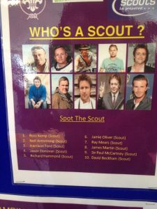 who is a scout